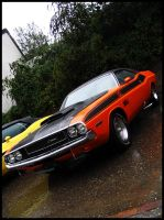 Challenger T A by AmericanMuscle