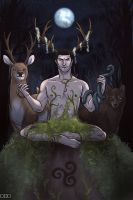 Lord of Wild Things by thatoddowl
