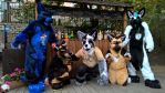 TheKareliaFursuits at EF21 Biergarden by TheKareliaFursuits