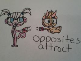 opposites attract by PokeNOW