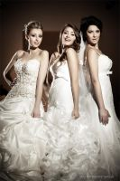 Wedding coutoure collection 2012 11 by PinkFishGR