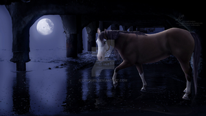 Moonlight's Desire by CoutureEquineDesigns