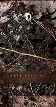 Package - Leaf - 1 by resurgere