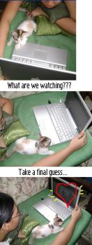 What Are We Watching? by anathema-yume