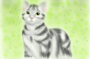 Grey  And White Cat by misaka-mikoto13