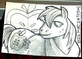 Sketchcard - MLP Big Macintosh by ToniPendragon