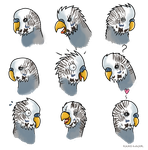 Budgie, Boo Expressions - Commission by Kosmotiel