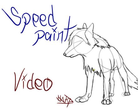 Speed paint -youtube- by DSh96