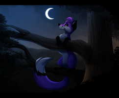 Night Scope by Kitchiki
