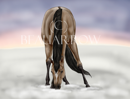 The Dawning by BeauArrow