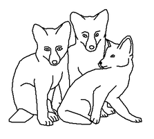 Three Fox Cubs - Line Art by Harry-Potter-Addict