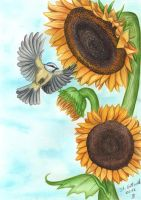 Sunflowers and bird by Schiraki