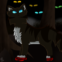 Hawkfrost in the dark forest by LoveMoonspirit