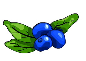 Blue berries by RandomZet