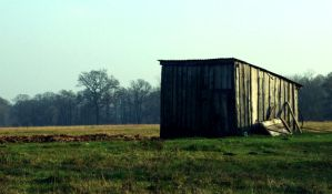 Shed by mateuszskibicki1