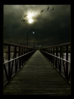 Bridge by Odeusp