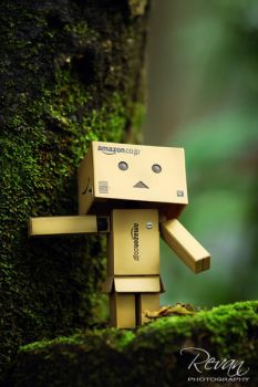 Danbo by Revanphotography