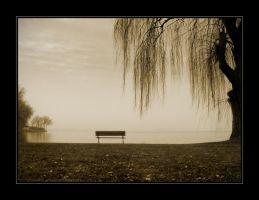 Bench by leavenotrase