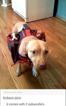 Subwoofers by TheFunnyAmerican