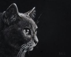 Miss Savannah - Pastel Drawing by AstridBruning