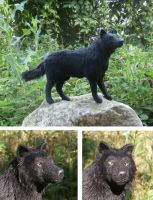 black wolf by ellis-animals