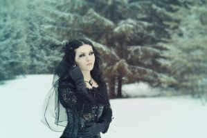 Wintermaerchen by mysteria-violent