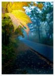 Down the Road Autumn Goes by melkin22