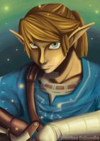 Link, The Hero of Time by LordJohn