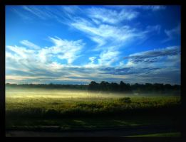 Morning Mist by Littography