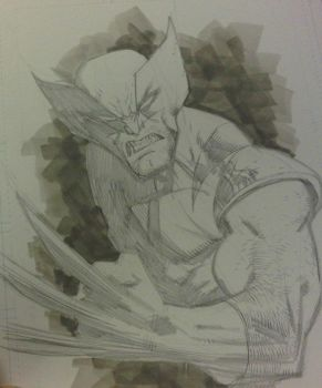 Wolverine AAcomicon sketch by RyanOttley