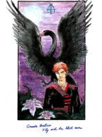 SA: Fly with the black swan by Infernal-Feline