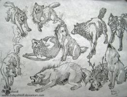 Elemental Wolves. by ZulayaWolf