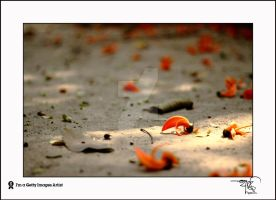 Lost Love by HamimCHOWDHURY