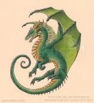 Green Dragon Tattoo Design by Strecno