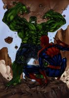 Spider-Man vs. Hulk by Ronron84