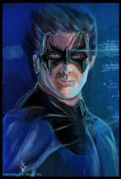 Nightwing/ Dick Grayson by Indrajit03