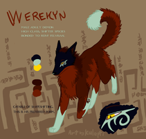 Werekyn Ref Sheet by kulapti