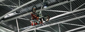 Fmx6 by MetallerLucy