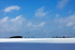 Winter 9 by rici66