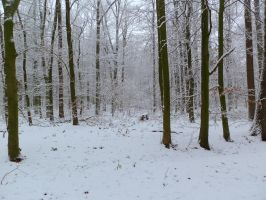 snow 74 by tegalus