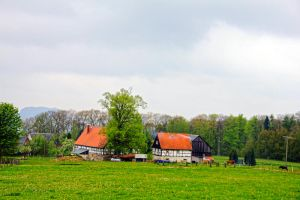 Country Life by fantom125