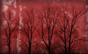 Bloody Trees by PascalsPhotography