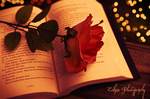 The book of love by EclipxPhotography