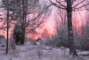 a winter sunrise by linedal