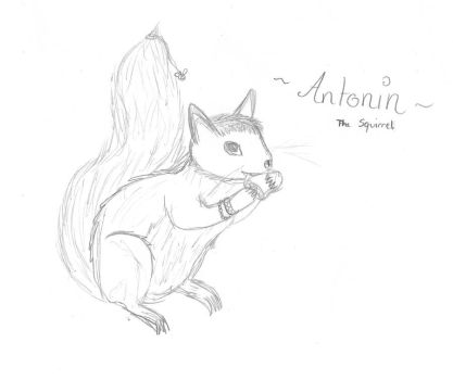 Anto's Squirrel by JeiiDow