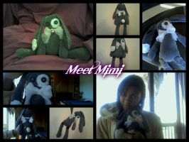 Mimi, My first plushie ever!! by AkwardFairy