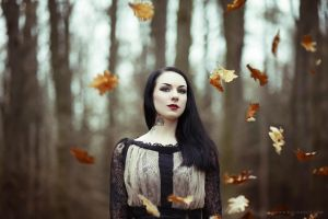 Autumn Leaves II by luciekout