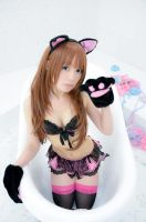 Neko Cosplay Sample #2 by Shiizuku