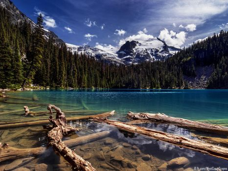 August by IvanAndreevich