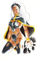 Storm Copic Colored by daikkenaurora